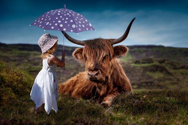 Parapluie 2